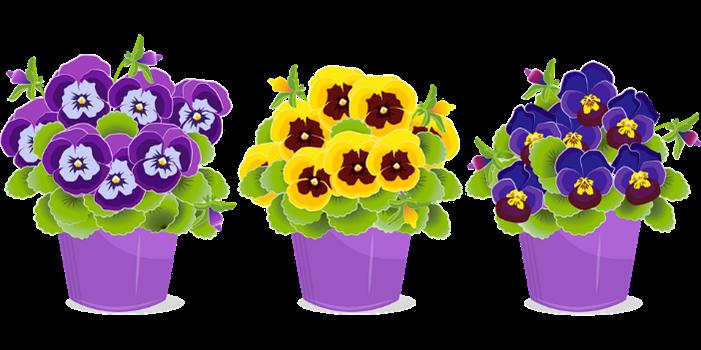 Flowerpots Image